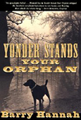 Cover of Yonder Stands Your Orphan, by Barry Hannah