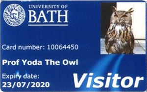 University of Bath library card for Yoda the Owl
