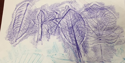 Leaf rubbings. Photo by Abby Johnson