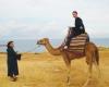 moulaison_camelriding.jpg