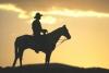 westerns-cowboy.jpg
