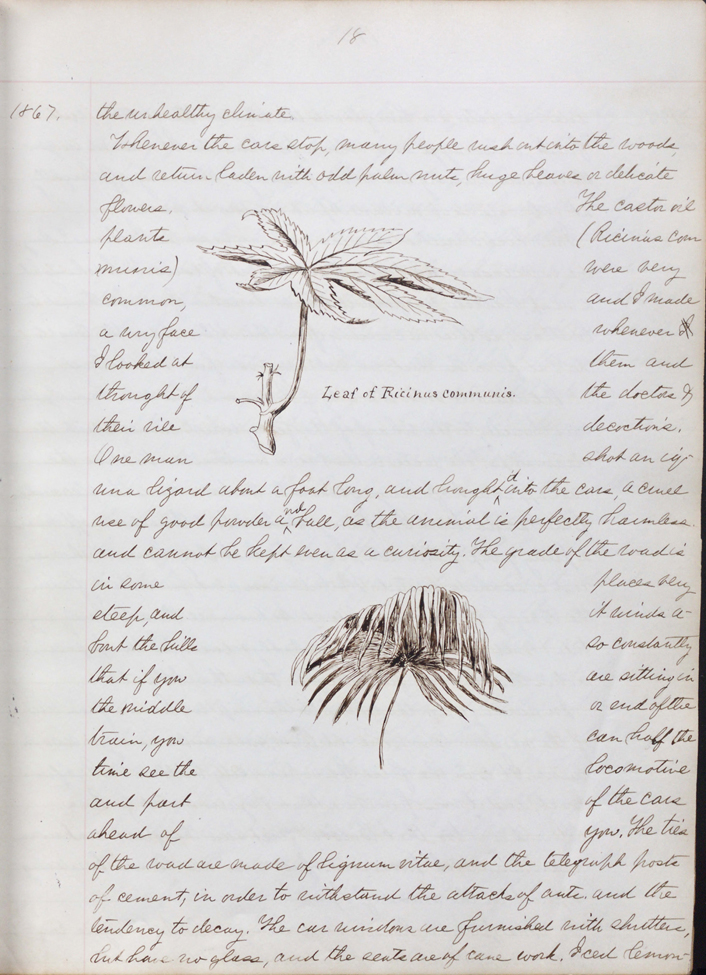 Handwritten diary from William Whitman Bailey, covering April 1867 to April 1868, when Bailey was botanist to the United States Geological Exploration of the Fortieth Parallel. Illustrated with drawings and mounted photos.