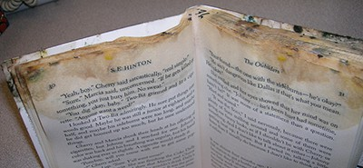 A damaged, weedable book