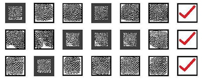 Sample fingerprints that the researchers at N.Y.U. and Michigan State University compared against the so-called MasterPrints. Solid black lines around a print indicate a match