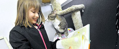 Mackenzie Derrig, 11, a fifth-grader at the Fort Dodge Middle School, gets checked out by one of the cats at the Almost Home Shelter while reading to the animals. Photo by Hans Madsen