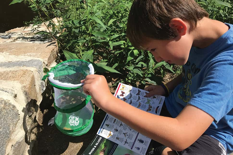 At Pocahontas State Park in Chesterfield, Virginia, Mitchell Scheid uses supplies from his library backpack to examine local insect life. Photo: Lisa Scheid
