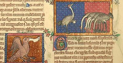 Il Bestiario di Peterborough (ca. 1300) Bestiarium aus Peterborough. Facsimile