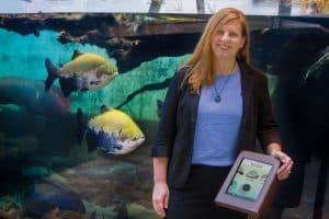 Alisun DeKock stands beside the species identification iPad in the Shedd Aquarium's Amazon Rising habitat, as two South American tambaqui fish swim by.