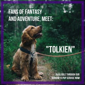 Tolkien, from James Madison University Libraries' Borrow-a-Pup service