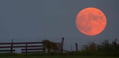 A poetic moon