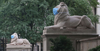 The lions, who celebrated their 109th birthday in May, sit 90 feet apart, flanking the steps of the majestic Beaux-Arts library building at Manhattan's Fifth Ave. and 42nd St. (Photo: Andrew Schwartz/New York Daily News)