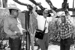 Lorentino Noceo, Bernard Fontana, and Frank Lopez discussing the reconstruction of a brush house and ramada at the Arizona Sonora Desert Museum as part of the original Doris Duke Native American Oral History Project. (Photo courtesy of Arizona State Museum at the University of Arizona, photo by Helga Teiwes)
