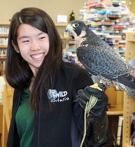 Photo of a young woman with a bird during a Wild Ontario event at Guelph (Ont.) Public Library